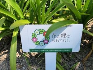 花と緑のおもてなし